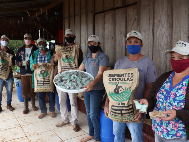 450 quilos de sementes crioulas serão distribuídos a famílias no Oeste do Paraná